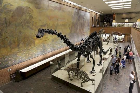 День Рождения в Палеонтологическом музее «Праздник Юрского периода»