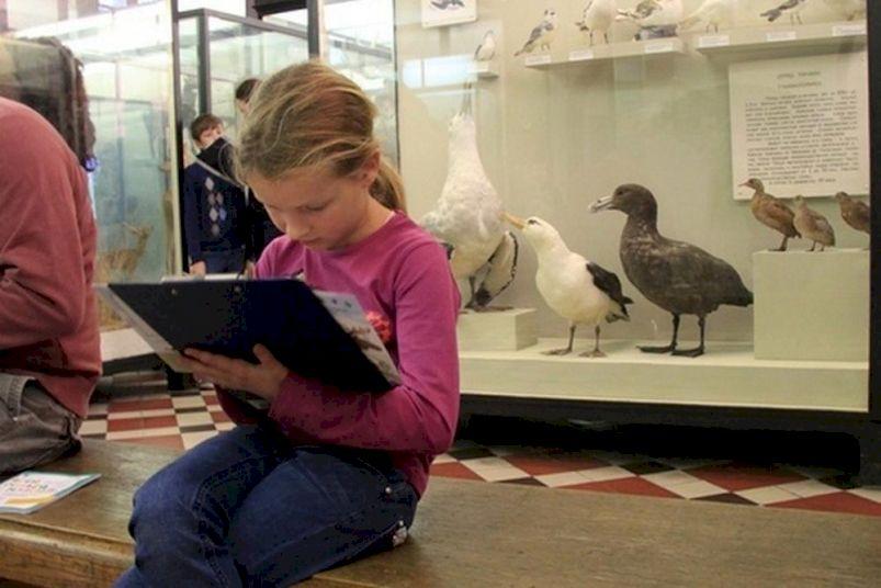 День Рождения в Зоологическом музее МГУ «Ребятам о зверятах»