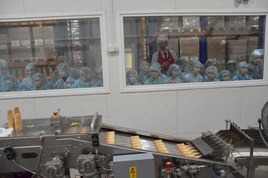 Фабрика мороженого «Чистая Линия»