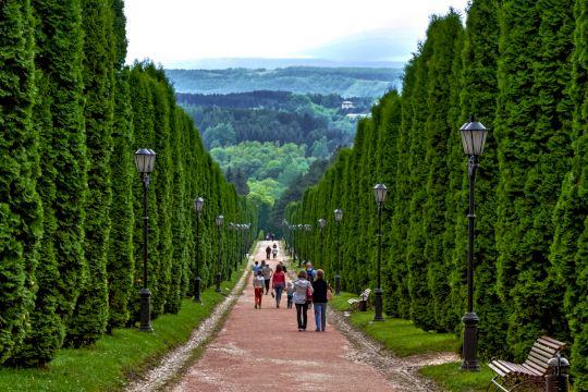 Экскурсионный тур по Северному Кавказу «Курортный роман»